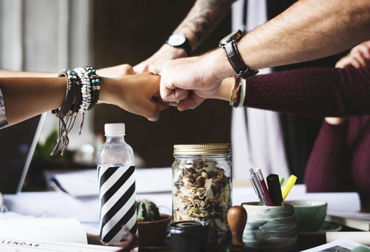 Na czym polegają programy partnerskie?