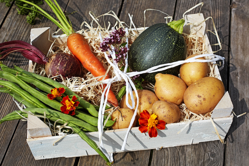 Podstawowe zasady transportu warzyw i owoców